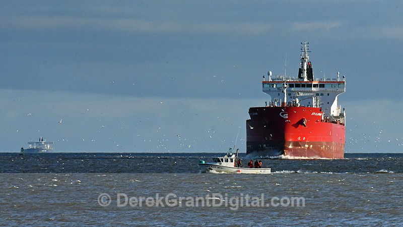 STI Clapham approaching Courtenay Bay Saint John New Brunswick Canada - Boats