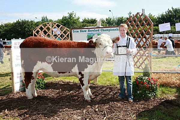 _MGN3304 - Royal Meath Show Trim Co Meath