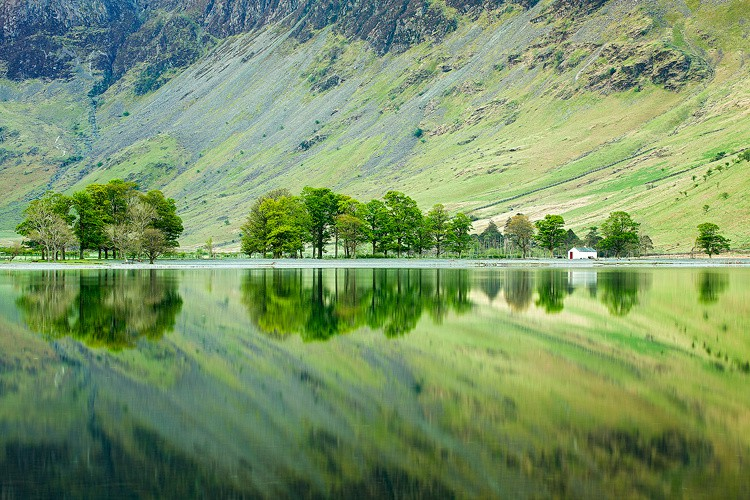 Tree Reflections in Buttermere | Lake District National Park