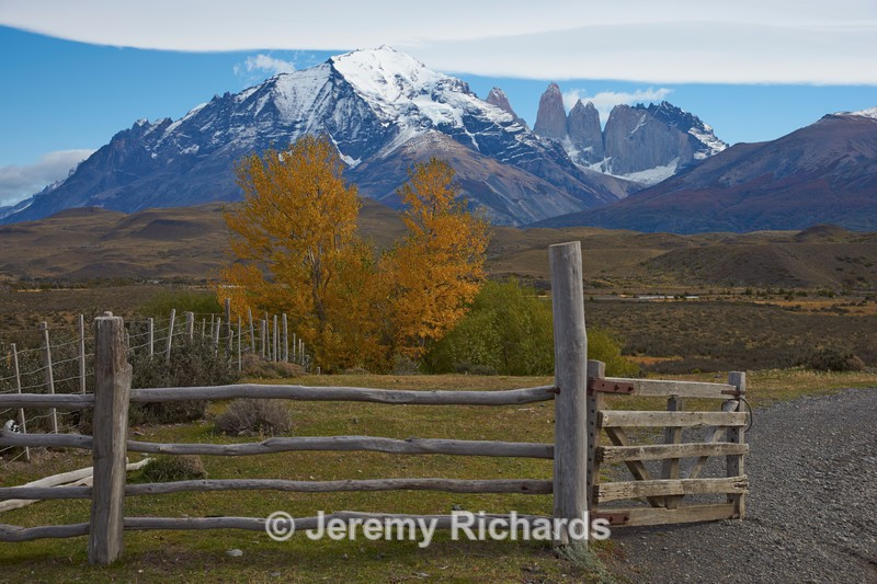 Autumn Colour in Torres del Paine National Park - Torres del Paine National Park