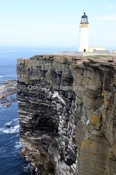 Westray - Orkney Images