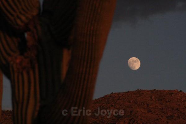 Moonrise over Rincons - Tuscon, Arizona