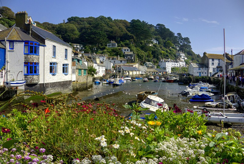 LO54 - The River Pol at low tide in Polperro - Greetings Cards Polperro