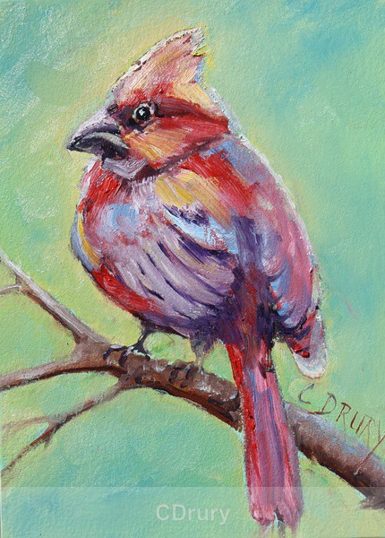 Cardinal - Colorful Critters