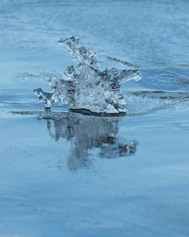 Jokulsarlon - berg and reflection3 - South and Central highlands