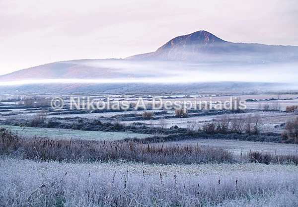 Morning Frost - Βόρεια Ελλάδα Ι North Greece