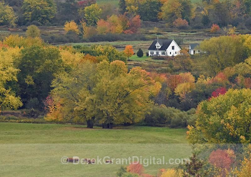 Westfield New Brunswick Canada Autumn Foliage - New Brunswick Landscape