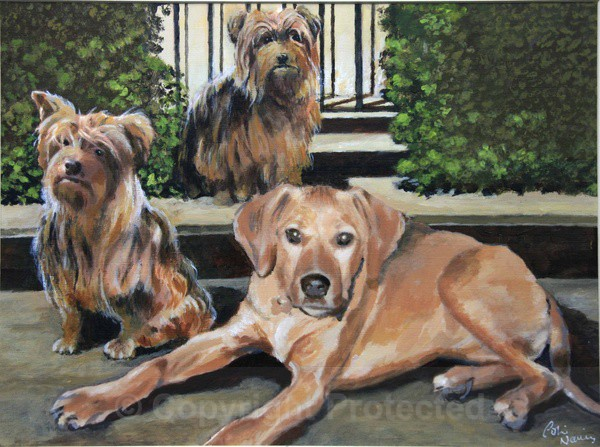 Sandy, Bengy & Barney - Portraits and figurative work