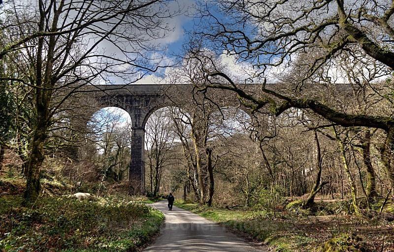 Treffy Viaduct - Cornwall Misc