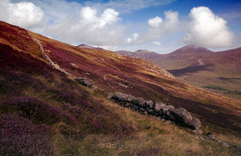 Purple Slopes - The Mourne Mountains (Spring,Summer and Autumn)