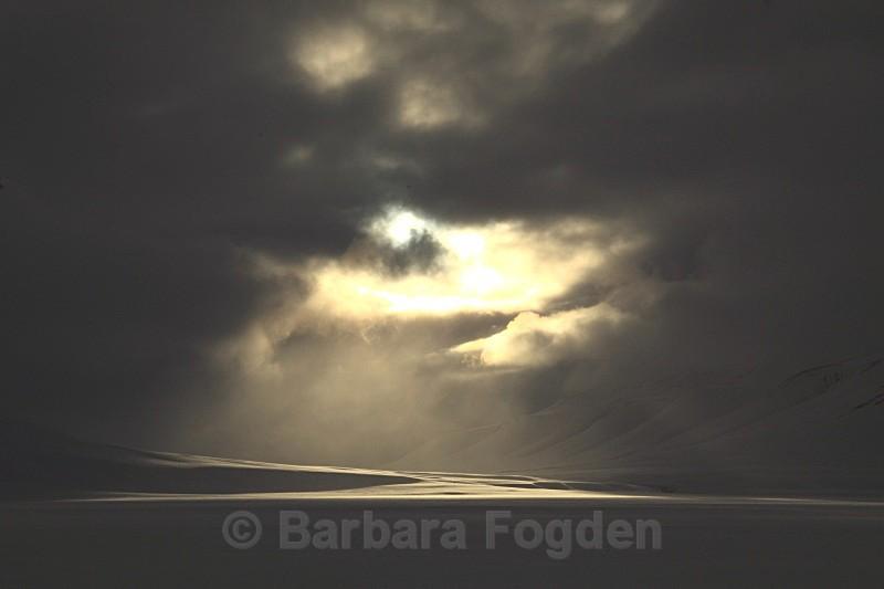 Sassendalen 5856 - Winter in the daylight