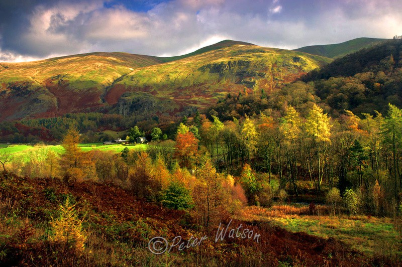 Near Thirlmere The Lake District - England