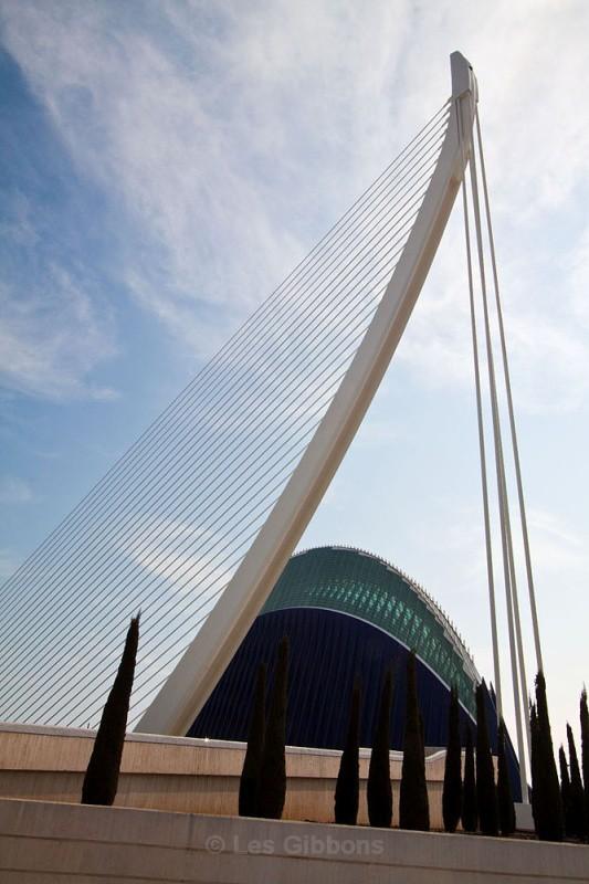 agora and bridge with trees - Valencia