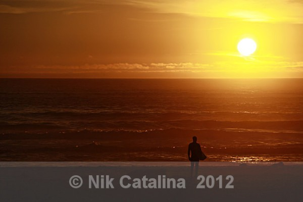 Sunset Surfer - SeaScapes