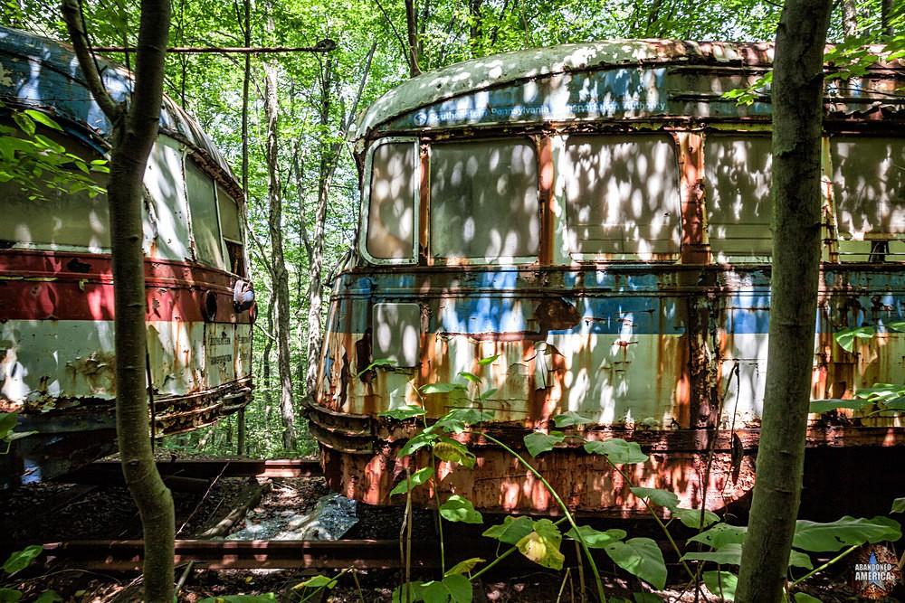 Trolley Graveyard | Sun-Dappled - The Trolley Graveyard