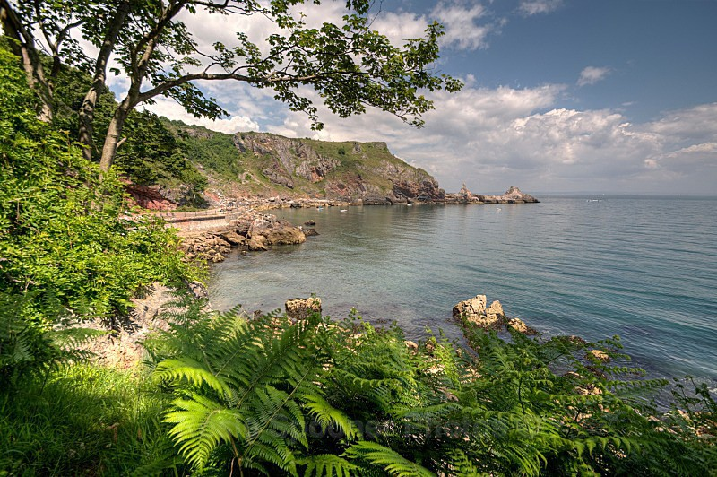 TQ16  - Ansteys Cove and Long Quarry Point - Greetings Cards Meadfoot Beach and Ansteys Cove Torquay