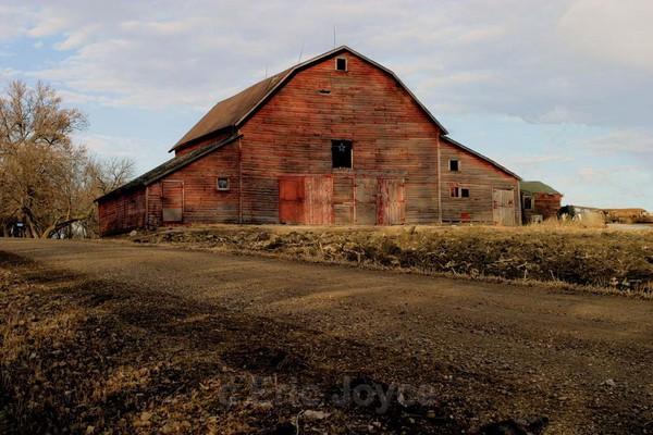 Road Side Barn - Barns & Remnants