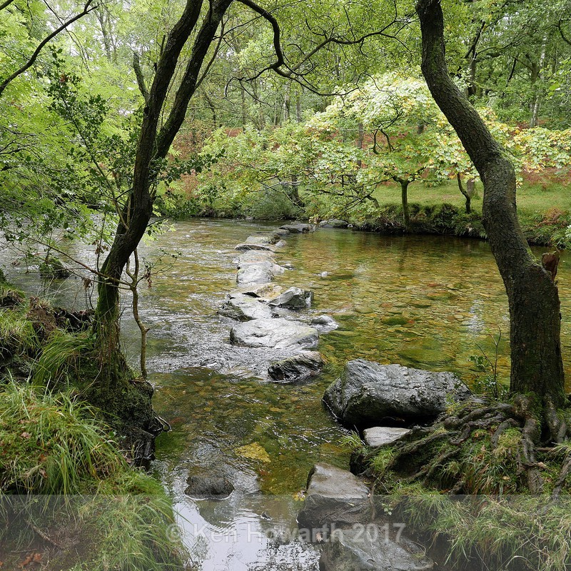 The watery path - Lakeland Landscapes