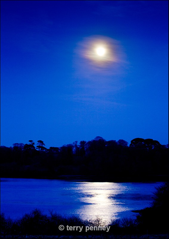 Blue Moon, Saltash - Cornwall