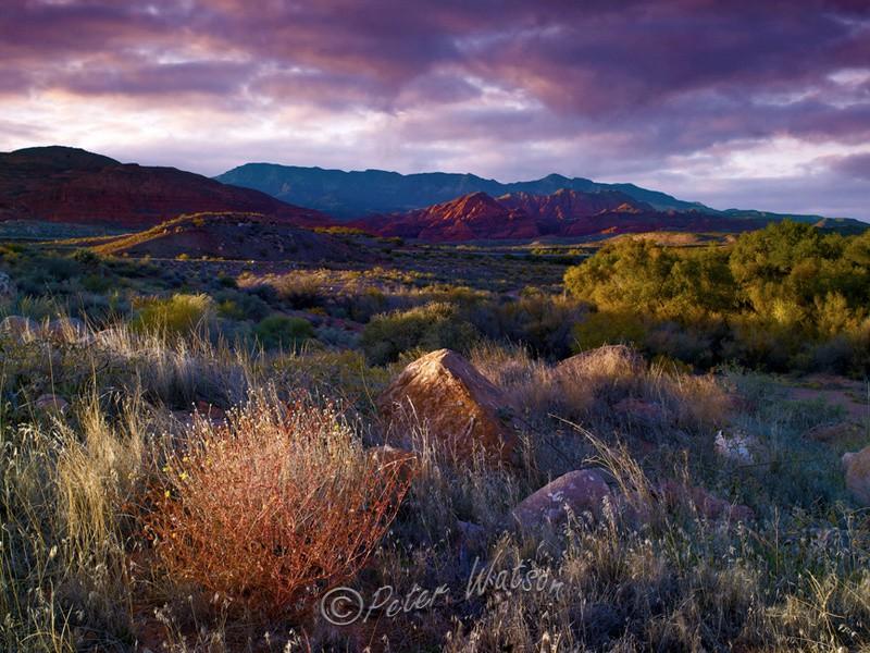 Red Cliffs Utah - USA