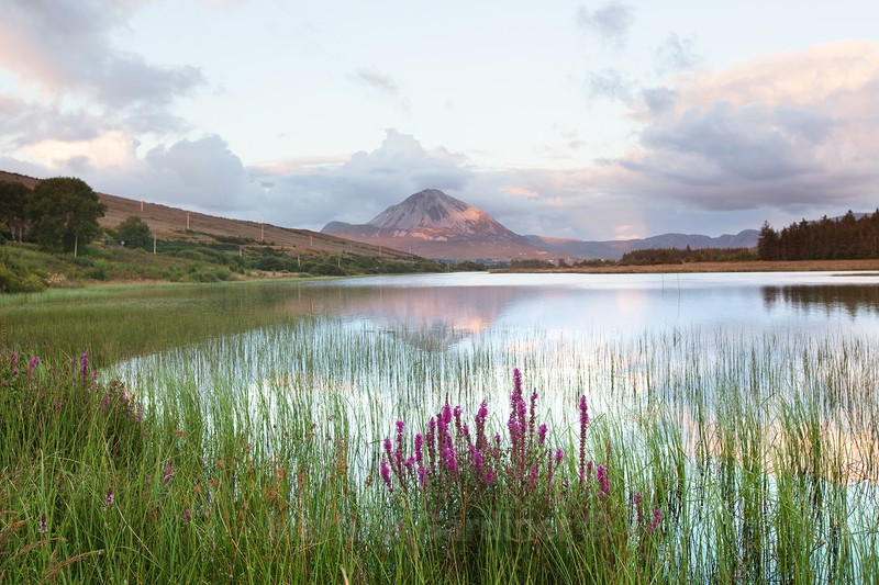 A view of Errigal - Ireland by Day