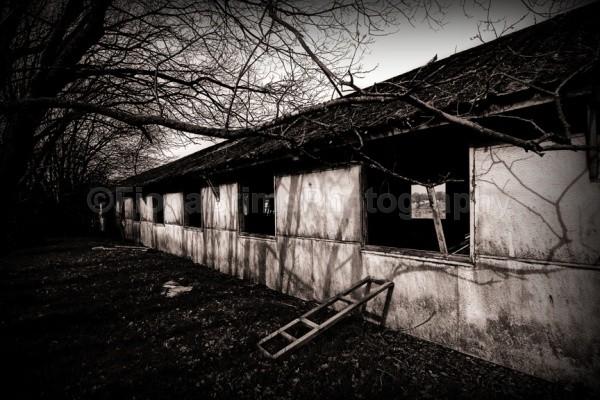 Killearn Hospital - Architecture