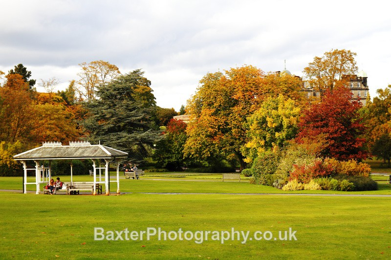 Observing Autumn - The Valley Gardens (Harrogate)