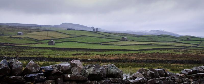 rainy walls - Yorkshire Dales