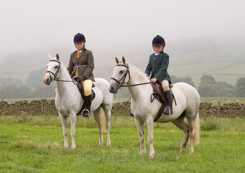 9 - Moniaive Horse Show 2008