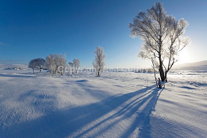 Rannoch Moor, Highland_1 - Landscape format