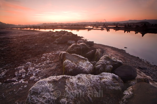 frost and winter sunrise, the gearagh nature reserve, co. cork, ireland.