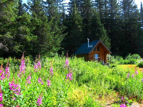 Taku Cabin - Alaska