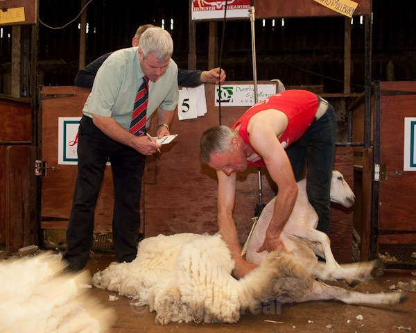 23 - Shearing Competition