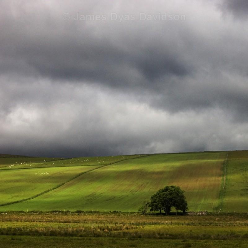 Cabrach landscape - Cabrach
