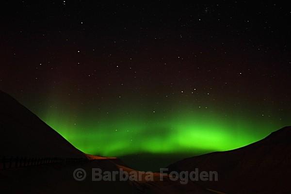 Northern Light 9346 - Polar night