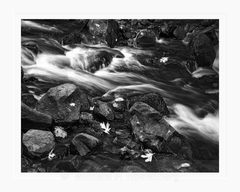 Leaves and Rapids, Columbia River Gorge, OR (2014/D01129) - CALIFORNIA, OREGON, AND WASHINGTON STATES