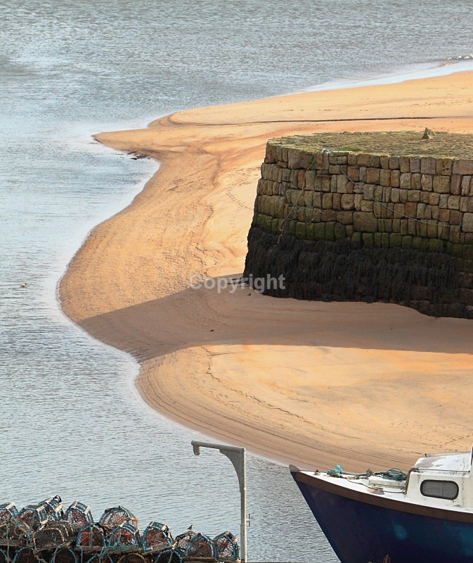 St Andrews Harbour - Landscapes