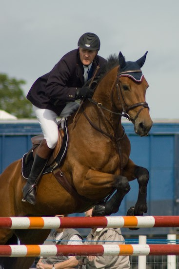 9 - Equestrian Photography