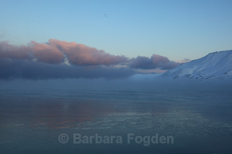 Sea fog in the pink light - The daylight returns