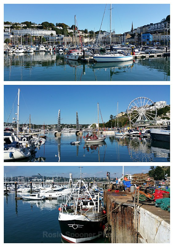 TQ118 - Torquay Harbour and Marina Views - Greetings Cards Torquay (separate galleries for Meadfoot Beach/Ansteys and Cockington)
