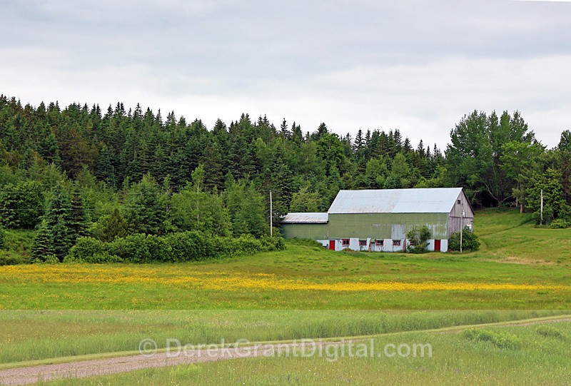 Shades of Green New Brunswick Canada - Old Barns & Buildings