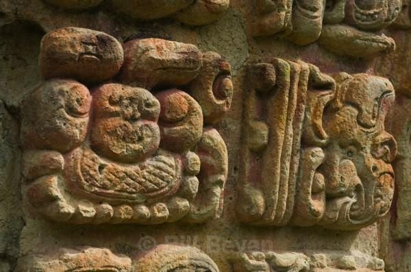 Heiroglyphs 1 - Copan
