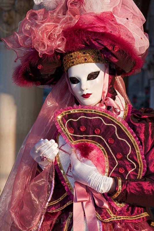 Roses2 - Venice