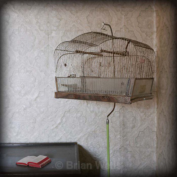 Bird Cage with Little Red Book - 'Stanley's Farmhouse'