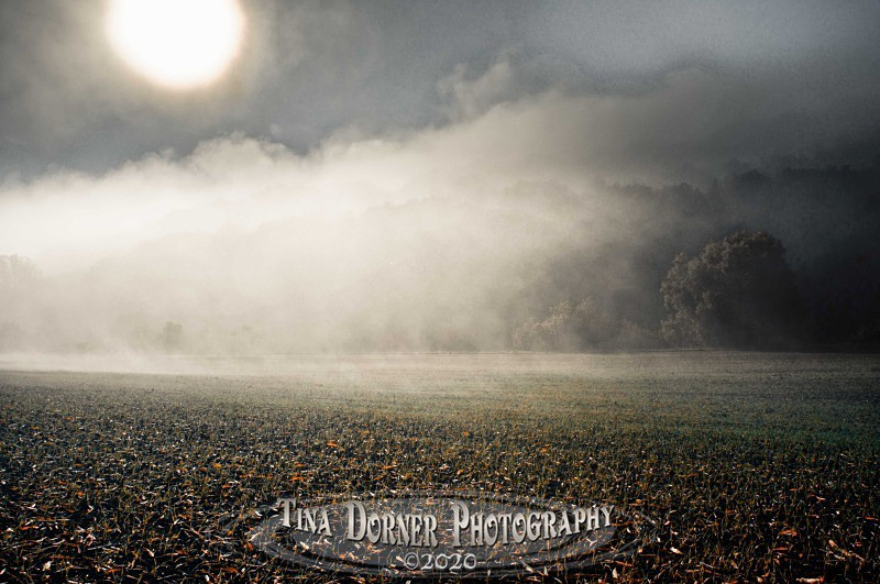morning mist on sown  field by River Wye from Autumn Forest of Dean and Wye Valley Portfolio by Tina Dorner Photography