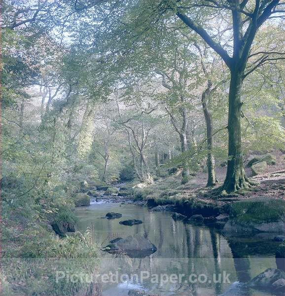 Cool Water - Devon and Dartmoor