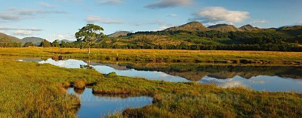 Loch Eil          ref eil 5 - West Highlands
