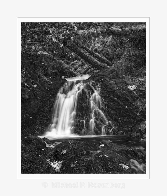 Fallen Leaves and Wet Rocks, Shepherds' Fall (2014/D01148) - CALIFORNIA, OREGON, AND WASHINGTON STATES