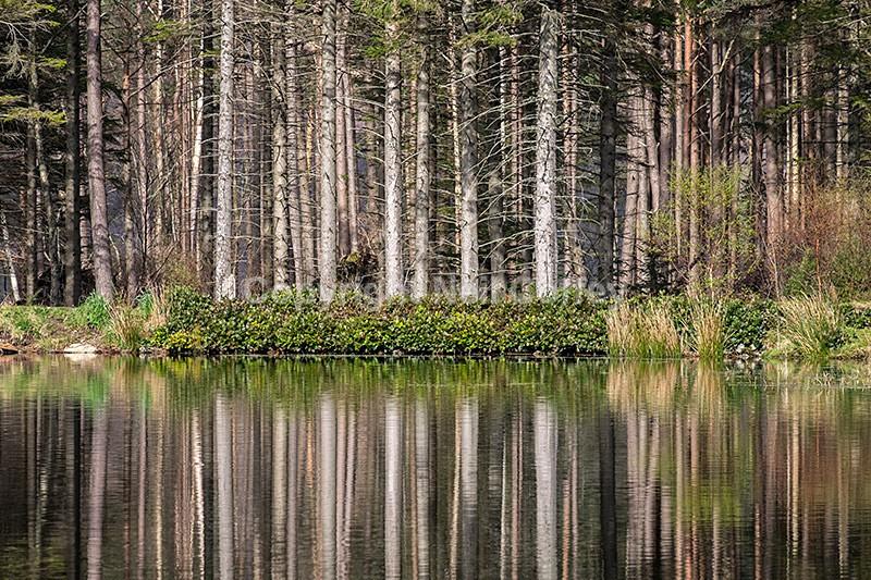 Glencoe Lochan, Highland - Landscape format
