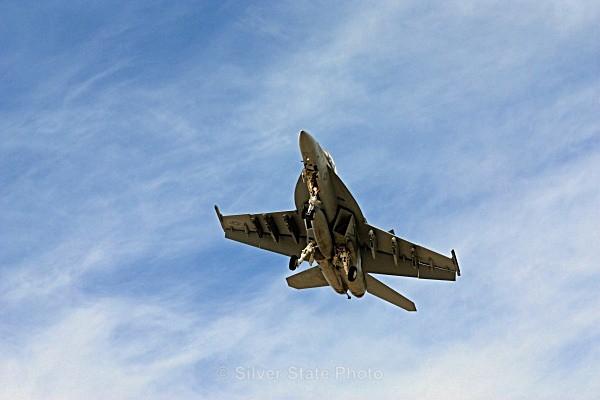 FA-18 Hornet - Nevada Birds